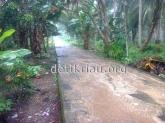 Jalan Provinsi Lintas Enok