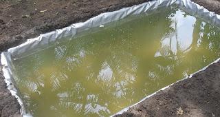 contoh kolam terpal