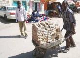 dolar-zimbabwe