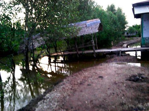 Kondisi Tanggul Sungai Keluang Desa Pulau Ruku Inhil yang dikerjakan secara Swadaya Masyarakat tahun 2013