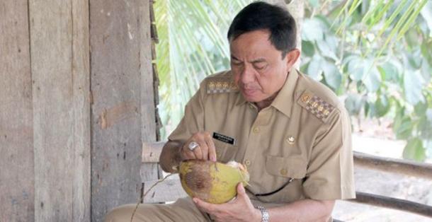 Bupati Inhil HM Wardan menikmati buah kelapa muda disela kunjungannya ke salah satu daerah di Inhil beberapa waktu yang lalu