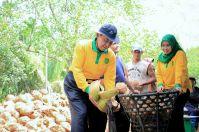 Bupati Inhil HM Wardan didampingi istri mempraktekkan cara mengupas sabut kelapa